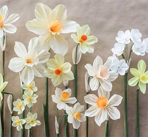 FF_Flowers_1